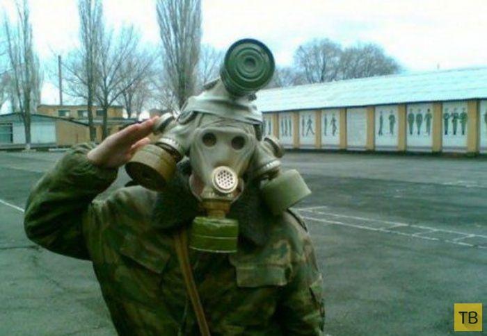 Армейские приколы и курьезы (25 фото)