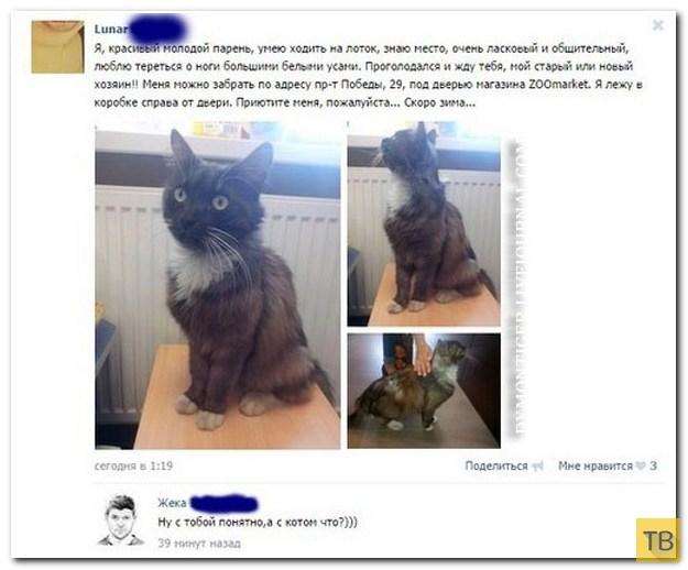 Прикольные комментарии из социальных сетей, часть 222 (28 фото)