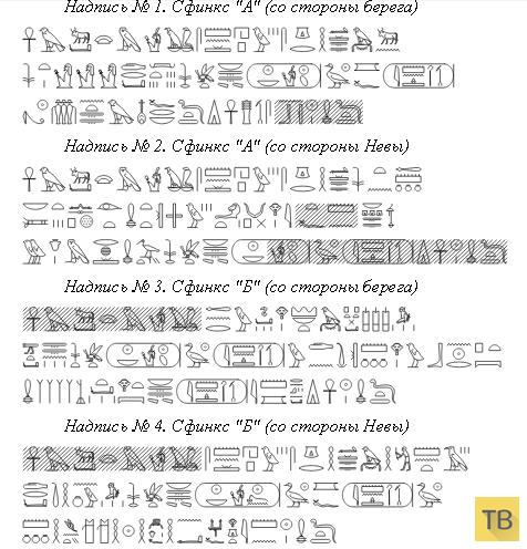 Новая теория происхождения людей (10 фото)