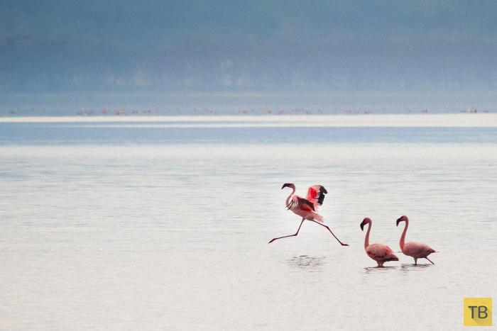 Топ 5: Самые красивые озера мира по мнению The Wall Street Journal (10 фото)