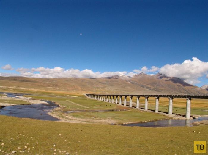 Цинхай-Тибет: самая высокая железная дорога в мире (8 фото)