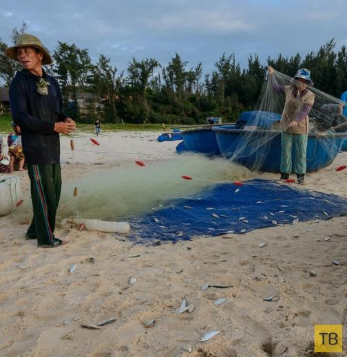 Вьетнамские рыбаки (16 фото)