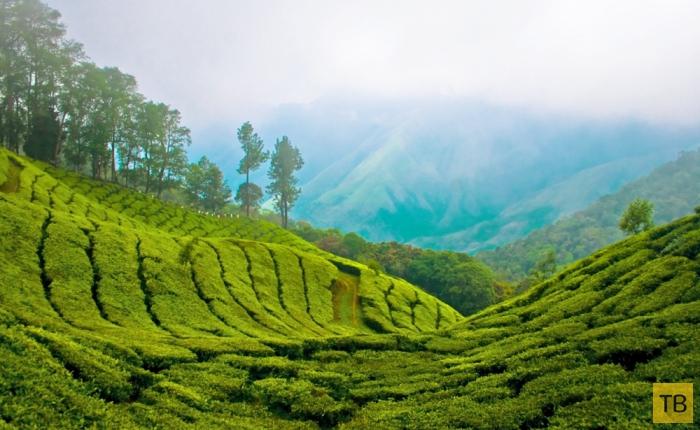 Подборка красивейших фотографий, сделанных путешественниками в Индии (19 фото)
