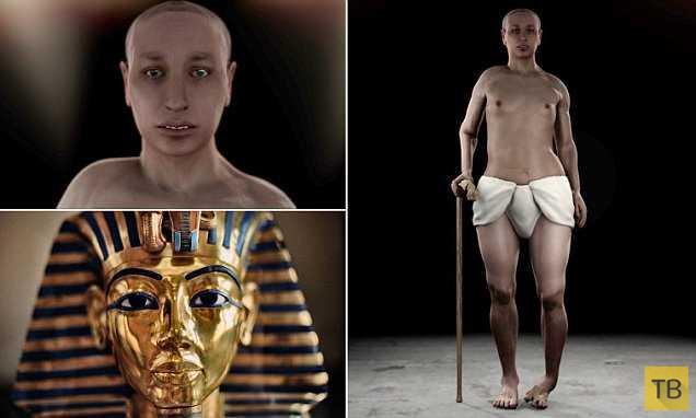 Тутанхамон оказался инвалидом (4 фото)