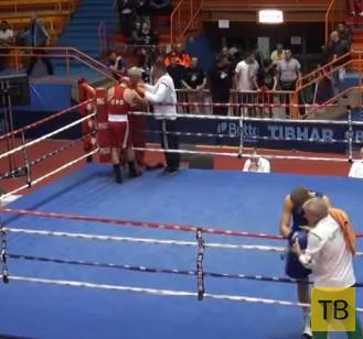 Хорватский боксер нокаутировал судью... Первенство Европы по боксу среди юниоров в Загребе