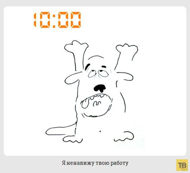 Жизнь обычной собачки (20 фото)