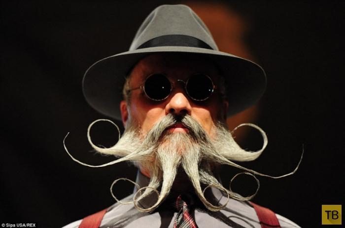 Бородачи Всемирного чемпионата бороды и усов (14 фото)