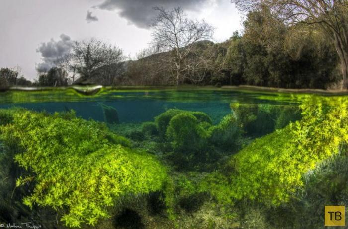 Что скрывается под водой (33 фото)
