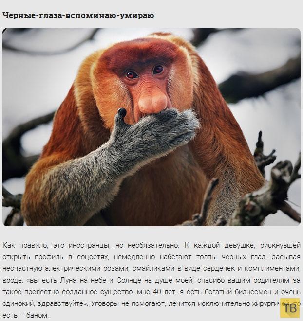 Классификация друзей в соц. сетях (10 фото)