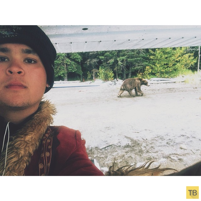 Новый тренд: селфи с медведем (16 фото)