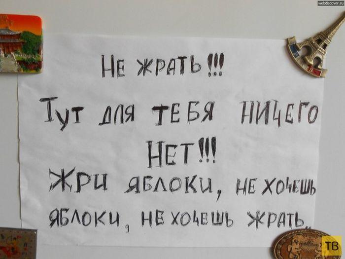 Подборка прикольных записок на холодильнике (21 фото)