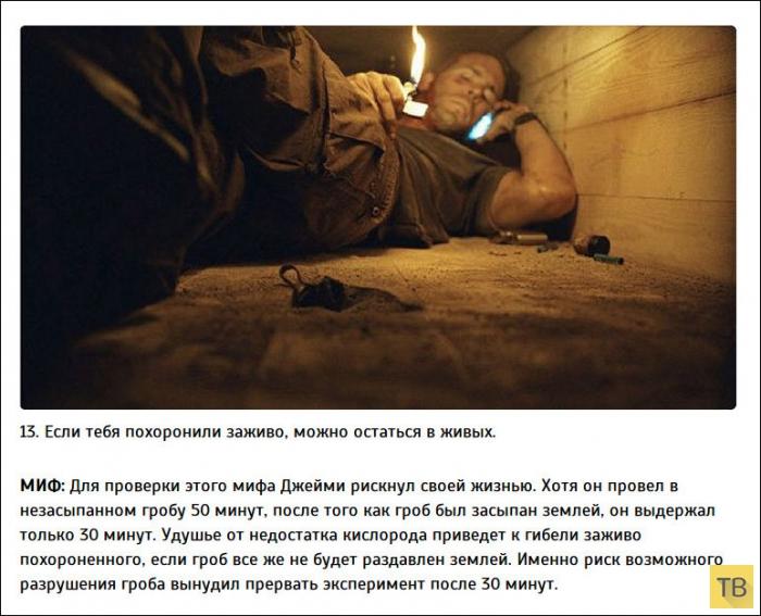 Топ 20: Распространенные мифы и реальность (20 фото)