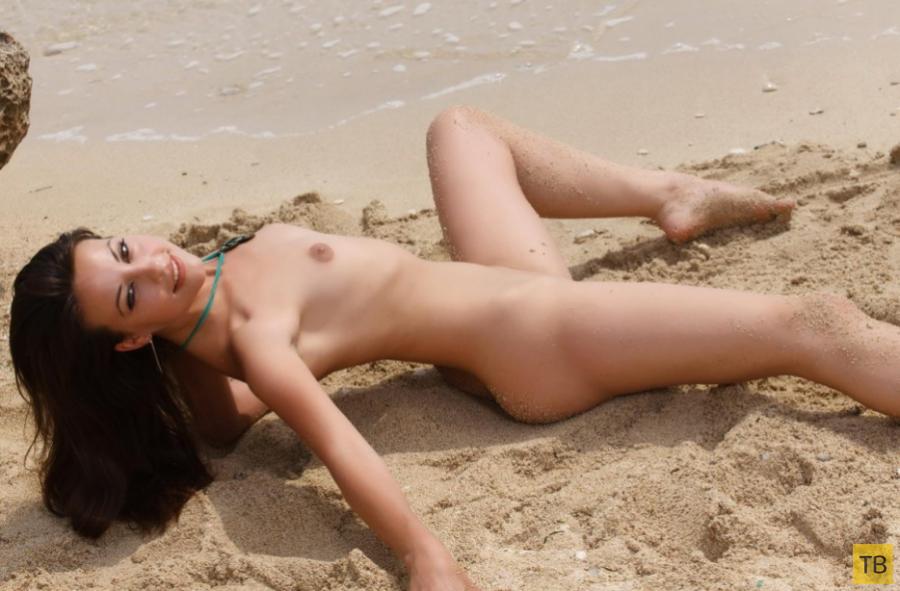 Киски на пляже фото 9