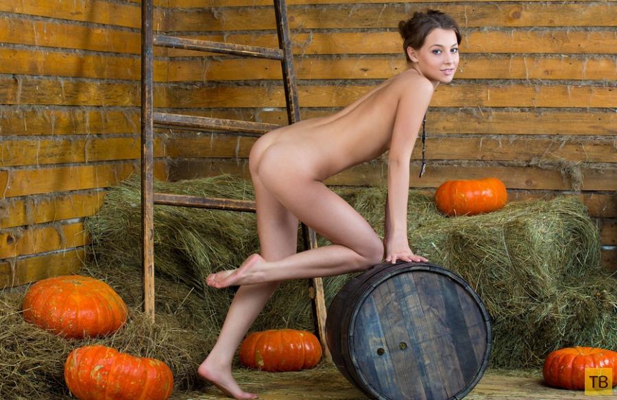 Сено, тыквы и красивая девушка (30 фото)