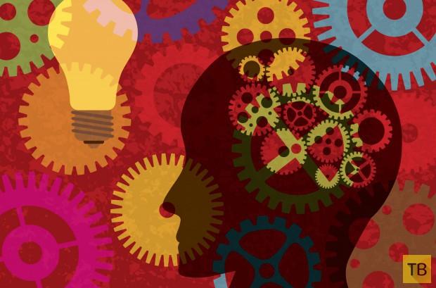 Тест: Какого возраста ваш мозг? (5 фото)