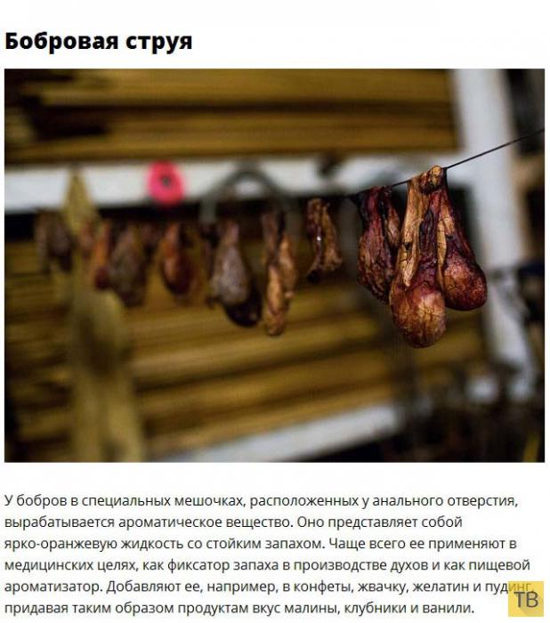 Сюрпризы в продуктах питания (9 фото)