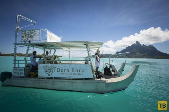 Подводная свадьба на Бора-Бора (8 фото)