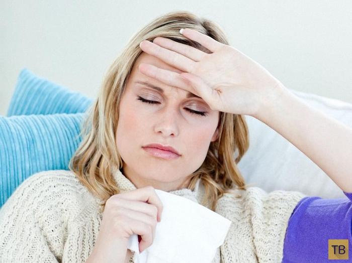 Все, что надо знать о вирусе гриппа (24 фото)