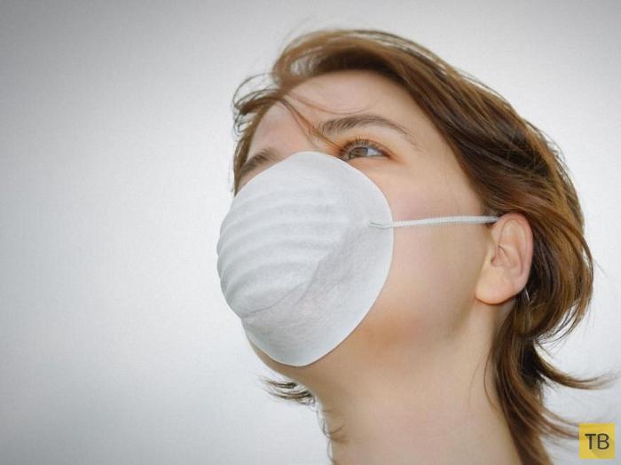 Территория эпидемии гриппа в картинках thumbnail